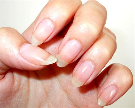 Almond Shape Press-on Nails From Claire's
