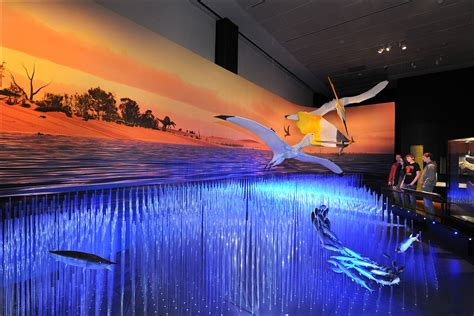 pterosaurs flight   age  dinosaurs opens