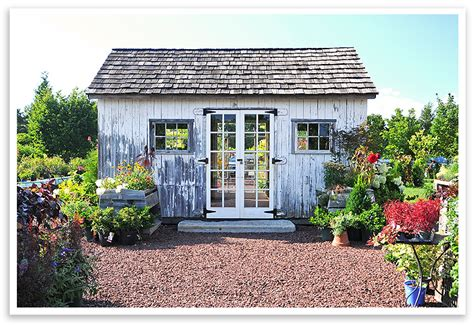 a recycled garden shed