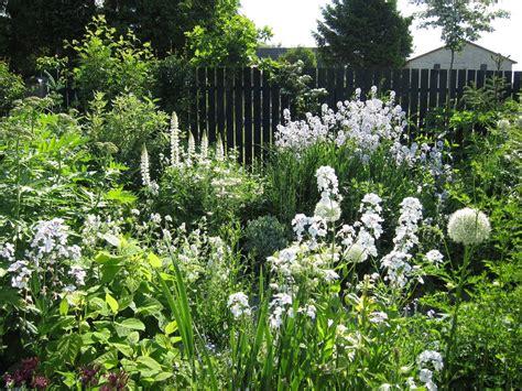 White Cottage Garden  Garden Love