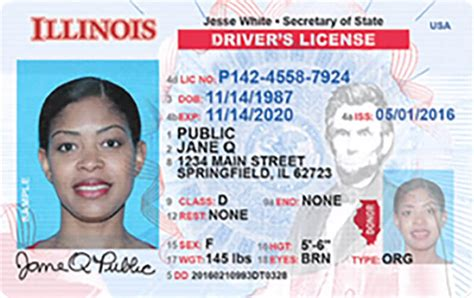 Illinois New Driver's License Application And Renewal 2019