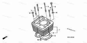 Honda Atv 2001 Oem Parts Diagram For Cylinder