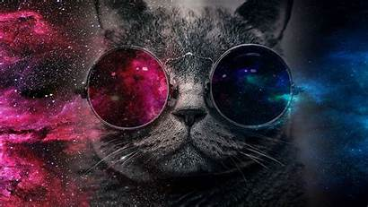 Galaxy Cat Wallpapers Glasses Imgur Backgrounds Techno