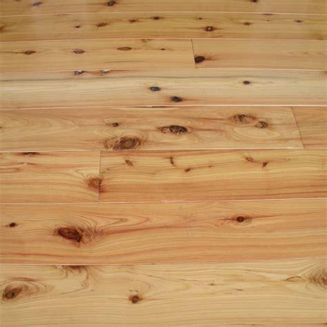 Cypress Pine ? Callitris Glaucophylla   Gloria Timber Flooring