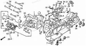 Tao 110cc Atv Wiring Diagram  Tao  Free Engine Image For User Manual Download