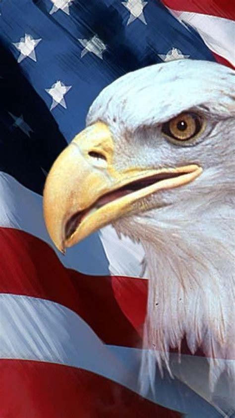 eagles flags usa american flag birds wallpaper