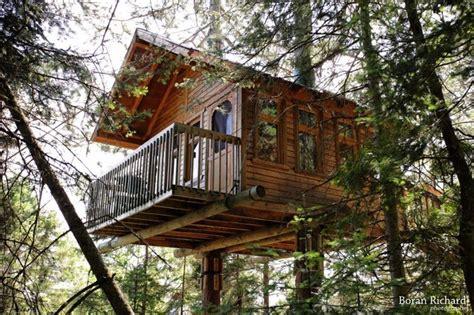 maisons cabanes dans les arbres frenchimmo