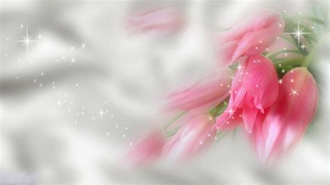 flower backgrounds hd flowers background hd backgrounds pic