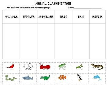 Animal Classification Sort by Kaytie Young Teachers Pay