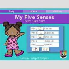 5 Senses Freebie  All About Me, My Body & Family For Preschool  Pinterest  Blog And Pictures