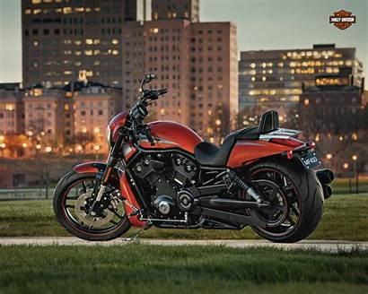 Harley Davidson Rod Night Special Vrscdx Service