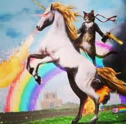 cat a unicorn badass cat a unicorn rainbow i