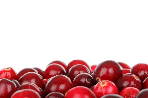 how to cranberries cranberry dry extract natureal ingredients natureal