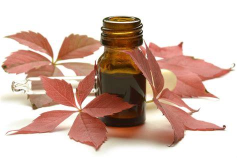 cura per emorroidi interne emorroidi interne la cura cure naturali it