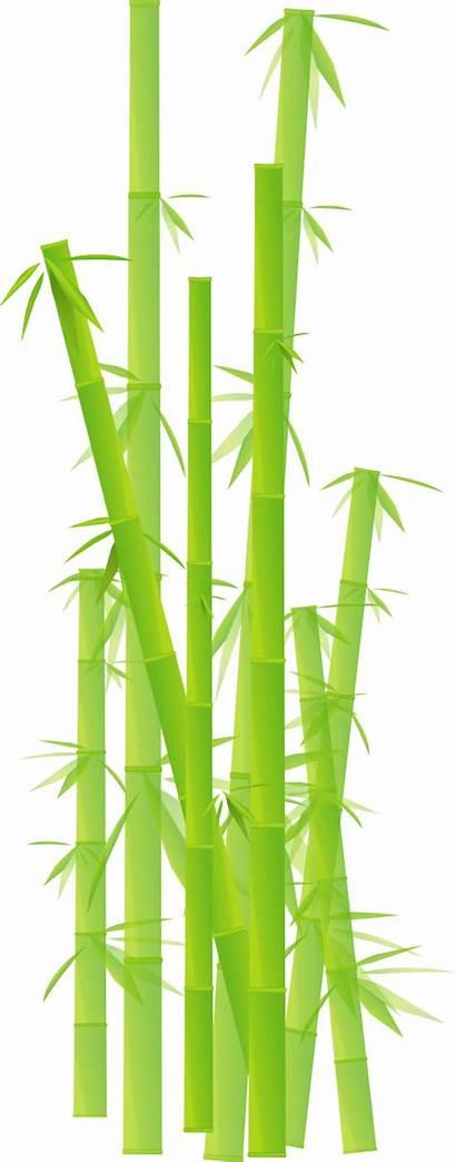 Bamboo Clipart Transparent Background Clip Border Sticks