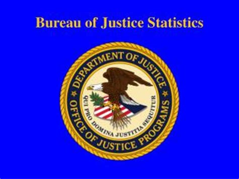 crime statistics bureau ppt international crime statistics some recent research
