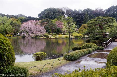 shinjuku gyoen national garden shinjuku gyoen garden truly tokyo