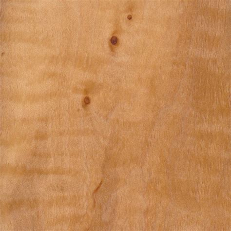 european alder  wood  lumber identification