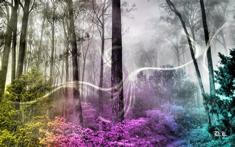 Artwork fantasy magical art forest tree landscape nature