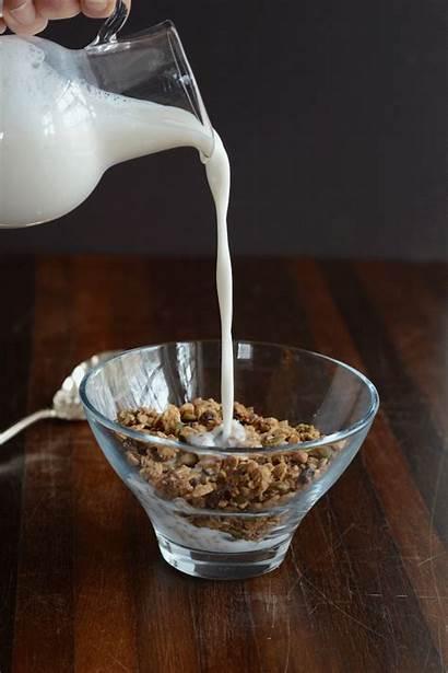Granola Cocoa Homemade Hazelnut Healthy Morning Delicious