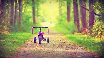 Bicycle Desktop Background Road Forest Backgrounds Children