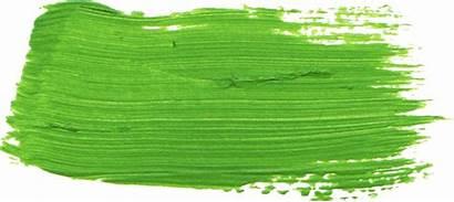 Stroke Brush Paint Transparent Hyperlocal Fiction Tea