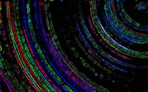 fractal backgrounds wallpaper cave