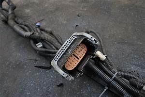 Transmission Wire Wiring Harness 15802632 Oem Chevrolet