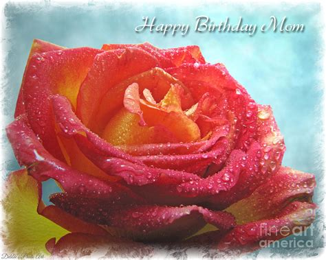 Happy Birthday Roses Images List Of Synonyms And Antonyms Of The Word Happy Birthday