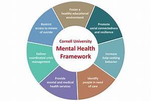 Cornell University Mental Health Framework