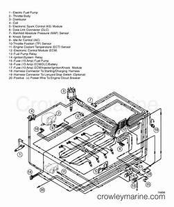 350 Engine Wiring Harnes
