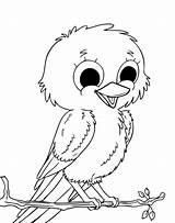 Canary Coloring Pages Bird Printable Getcolorings Improved sketch template