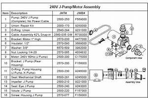 Jacuzzi Spa Pump  240 Volts  1 Hp  1 Speed  J Pump