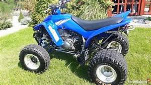 Yamaha Raptor 350 2006r Wazny Przeglad I Oc Olkusz