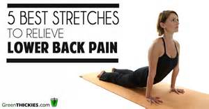 exercises to stretch your lower back  Lower Back Stretches For Pain Relief