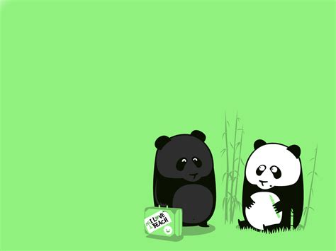 panda bear wallpapers wallpaper cave