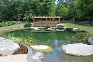 Karpfen Im Gartenteich : gartenteich im pool anlegen eine umweltfreundliche idee ~ Lizthompson.info Haus und Dekorationen
