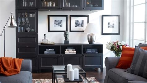 Images Of Ikea Storage For Livingroom  Home Design And