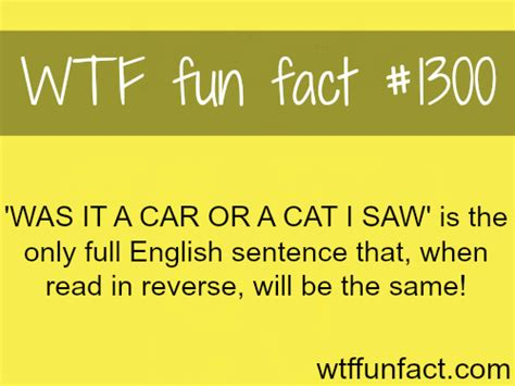 Wtf Fun Fact  Random Photo (34087600) Fanpop