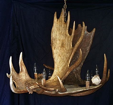 moose chandelier drokes antler