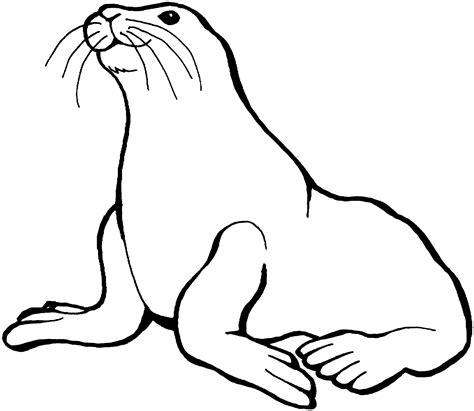 cute seal coloring   clip art  clip art  clipart library