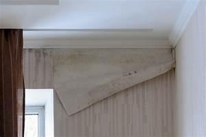 Styropor Auf Holz Kleben : stuckleisten styropor entfernen stuckprofile f r led einbaustrahler stuckleisten aus styropor ~ Orissabook.com Haus und Dekorationen