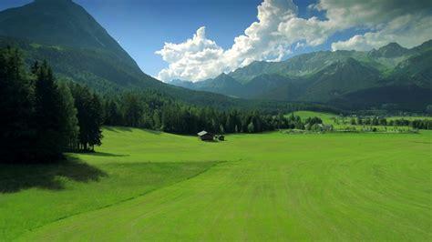 beautiful idyllic nature green grassland pasture scenery