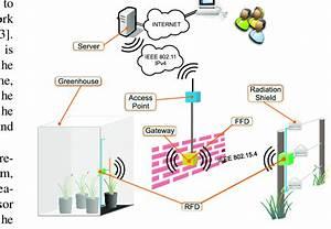 Topology Of The Wireless Sensor Network