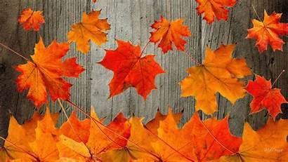 Backgrounds Fall Computer Desktop Rustic Wallpapers Nexus