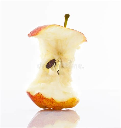 Apple Core stock image. Image of diet, seeds, healthy ...