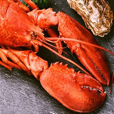 cuisiner du homard cuisiner le homard le homard thermidor technique de