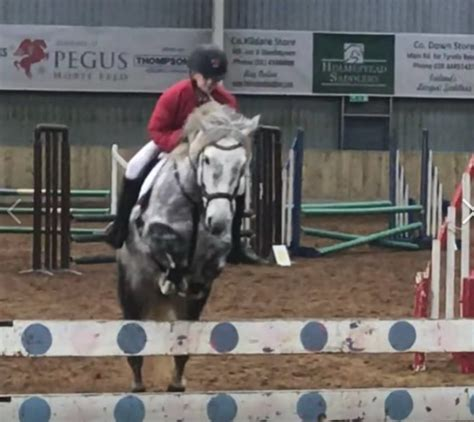show jumping rainey endowed
