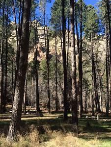 5 Page Website Design Cave Springs Campground Coconino Nf Sedona Arizona