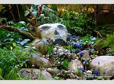 Lendro Plan Rock Garden Ideas For Shade Areas Here